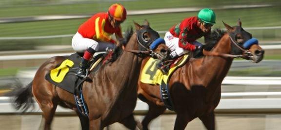 pferderennen zweikampf